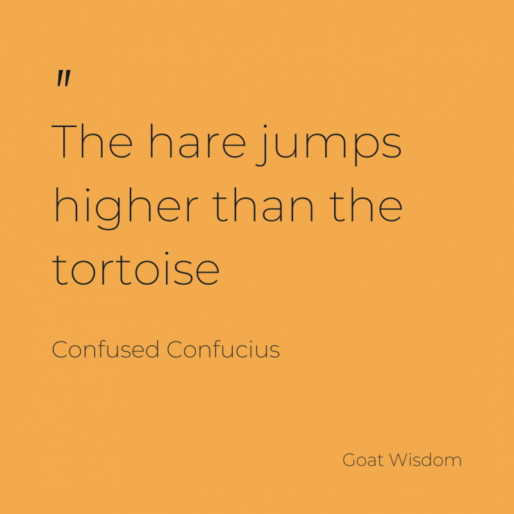 The tortoise is not all its cracked up to be