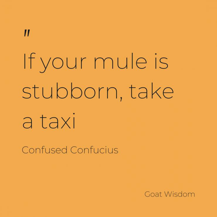 Stubburn as te preverbial